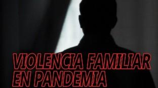 En lo que va del año y particularmente durante los meses de marzo, abril y mayo, es decir, durante la pandemia, la violencia familiar es el delito más denunciado ante la Fiscalía General del Estado, en Mexicali.