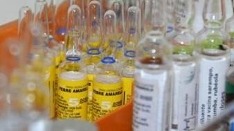 Gavi negocia vacunas a precios accesibles para naciones pobres, protegiendo a niños contra enfermedades infecciosas fatales o debilitantes.