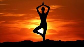 Con su práctica constante la yoga mejora la flexibilidad del cuerpo, aumenta la fuerza y el tono muscular.