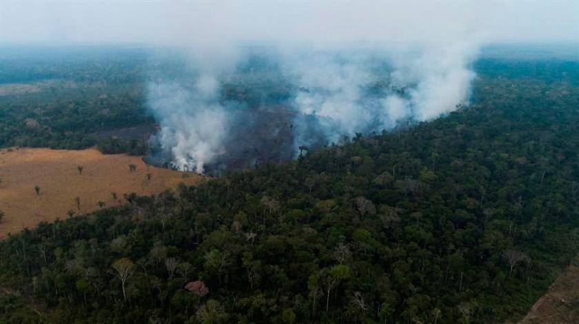 Amazonía: se registra el mayor número de incendios  en la zona desde 2007(EFE)