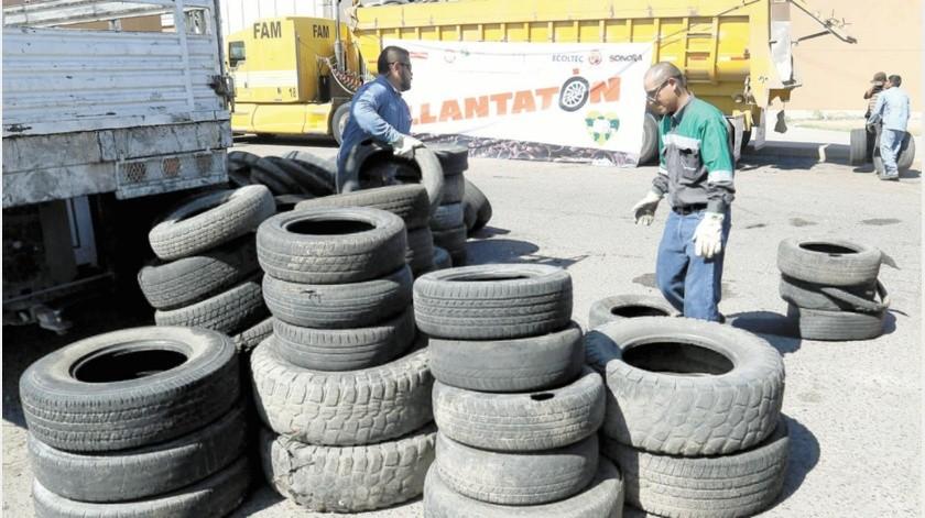 Norberto Barraza Almazán, titular de Servicios Públicos Municipales, indicó que con esta actividad se busca rebasar el número de unidades que se obtuvieron durante las dos jornadas del año pasado.(Especial)