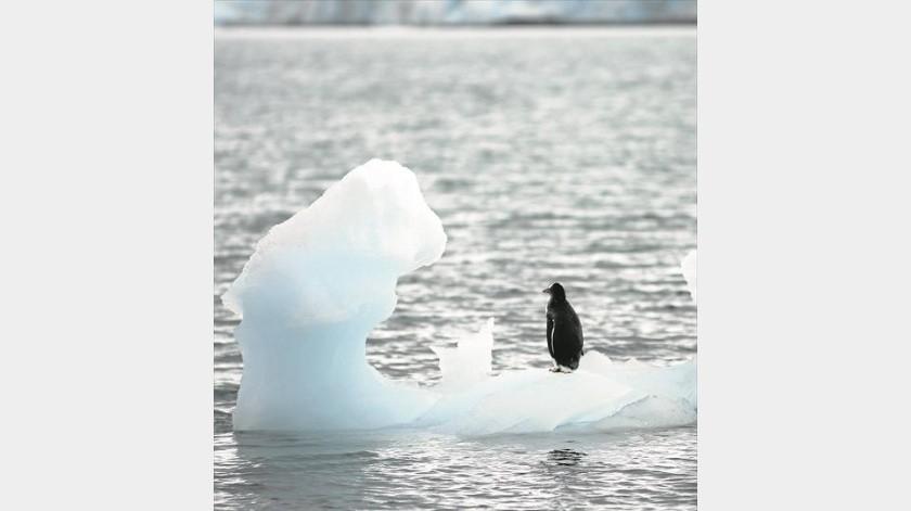 El Polo Sur se ha calentado el triple que la media mundial en 30 años(Tomada de la red)