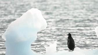 El Polo Sur se ha calentado el triple que la media mundial en 30 años