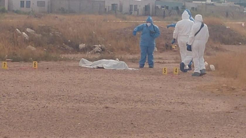 Hallan cuerpo sin vida en terreno baldío en Agua Prieta(Especial)