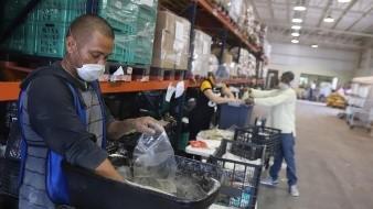 ¡Faltan voluntarios! Banco de Alimentos tiene entregas récord