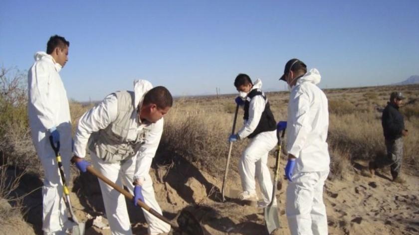 Continuarán con la búsqueda de cadáveres en el área de Valle de San Pedro el próximo fin de semana.(Ilustrativa/Archivo)