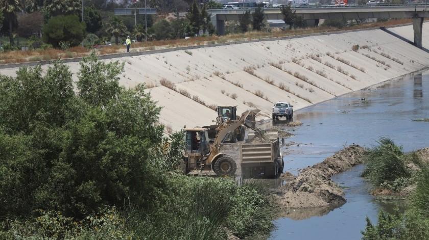 Algunas zonas serán más difícil de limpiar debido a la cantidad de árboles que hay.(Sergio Ortiz)