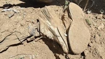 Hallan otro cuerpo en mega fosa clandestina de Valle de San Pedro