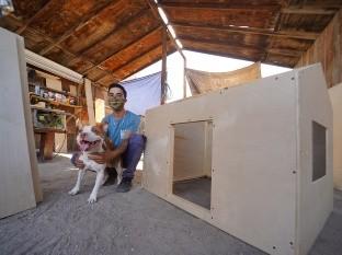 Construye casas de perro refrigeradas