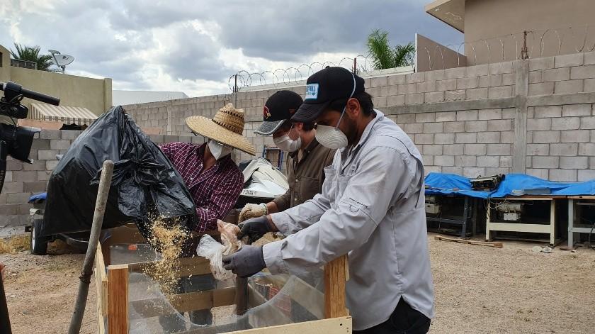 Jóvenes crean compostero comunitario(GH)