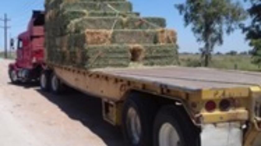 Roban camión con alfalfa en el valle de Mexicali