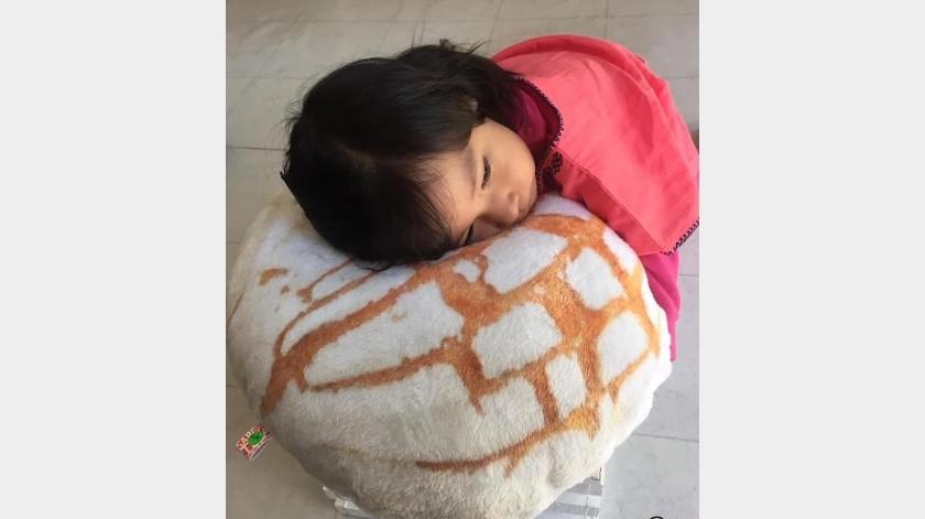Crean almohadas de concha y telera para los amantes del pan(Tomada de la red)
