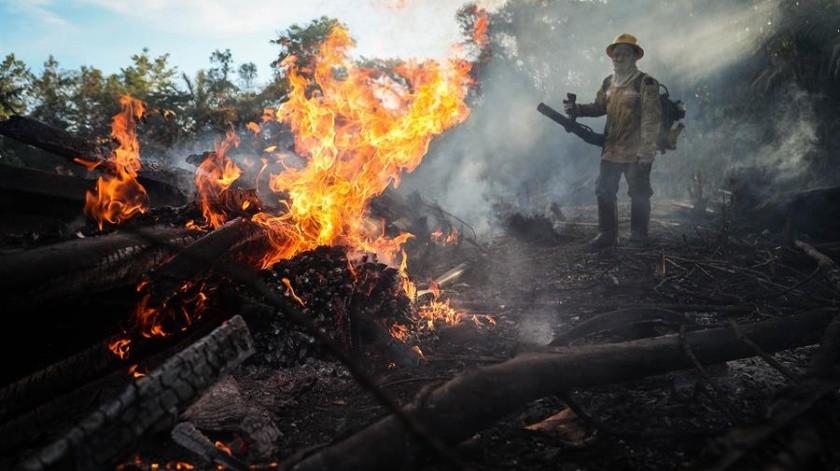 Los incendios vuelven a amenazar la Amazonía brasileña tras disparar en julio(EFE)