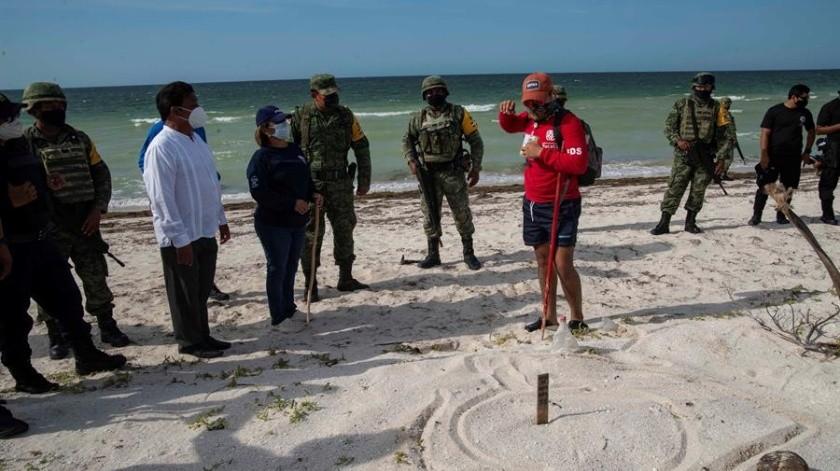 Elementos del Ejército de México protegen nidos de tortugas marinas en Yucatán(EFE)