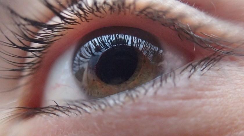 Descubren células madre para tratar de forma más efectiva el glaucoma(Pixabay)