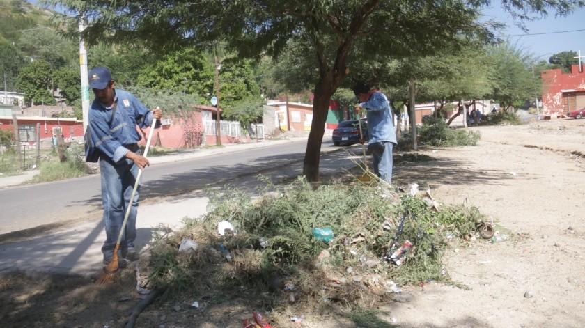 Recomiendan dar mantenimiento a los árboles, para evitar accidentes en esta temporada de lluvias.(Anahí Velásquez)