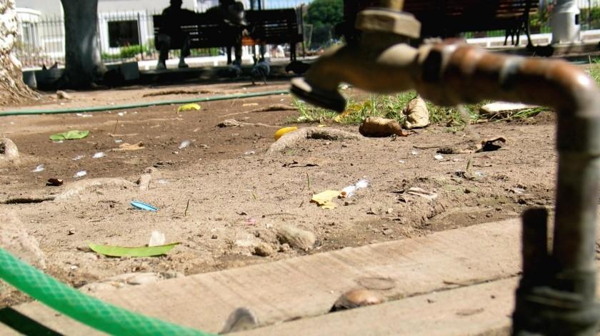 Carecen de agua en la comunidad de Vícam, asegura Apolette ValenzuelA.(GH)