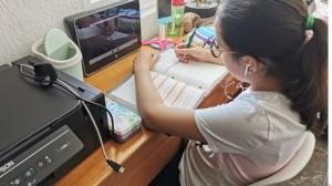Fallida, estrategia de teleaprendizaje para el próximo ciclo escolar 2020-2021: Especialistas en políticas educativas