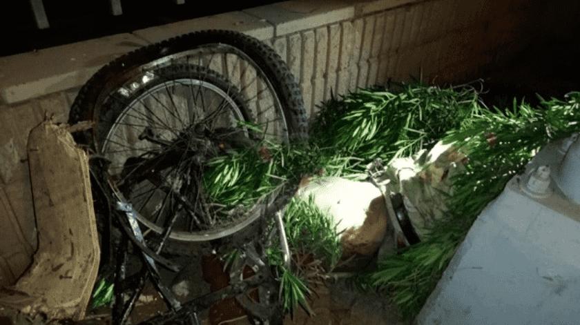 Embiste y mata a ciclista en corredor industrial Palaco(Cortesía)