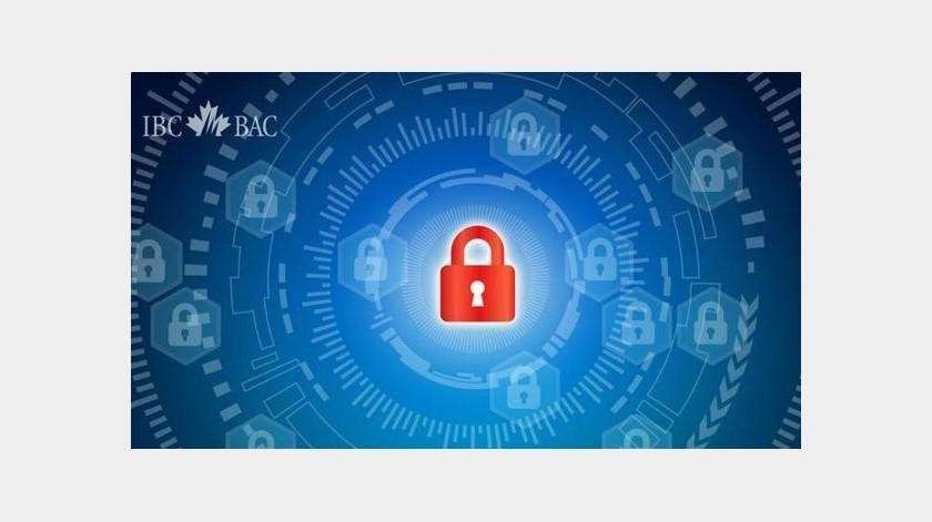 La ONU informa de un fuerte aumento del ciberdelito durante la pandemia