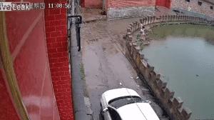 En un video se ve cómo la más pequeña resbala y cae y no puede salir del agua, la otra intenta ayudar y también cae.