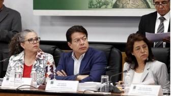 Se buscaque Canal del Congreso transmita próximo ciclo escolar a distancia: Mario Delgado