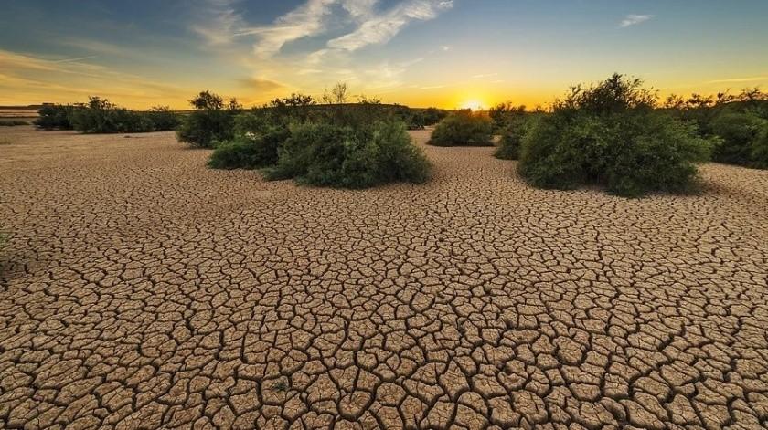 Sonora tiene el segundo mes de julio más seco históricamente(Ilustrativa/Pixabay)