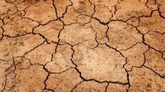 Chihuahua: Solicita a Conagua corrobore sequía en 52 municipios