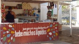 Presentan iniciativa para regular venta de comida chatarra a menores de edad en Veracruz