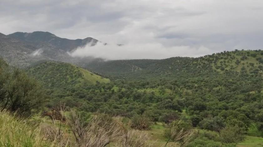 Pronostican lluvias y granizo para la Sierra Norte de Sonora(GH)