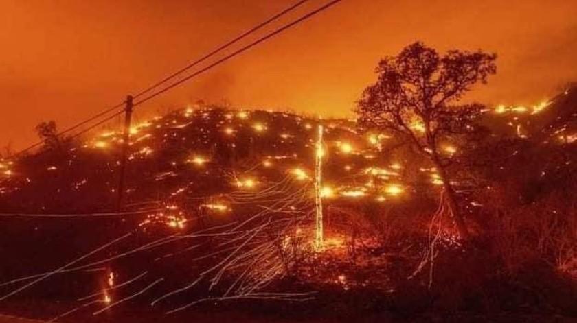 Incendios forestales activos en California se ubican como el segundo y cuarto más grande en la historia del estado(Captura Pantalla)