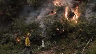 Gobernador de California solicita ayuda a Canadá y Australia para combatir incendios