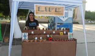 """Katia Gerardo encontró en """"mini cactus"""" y """"mini suculentas"""", una forma de emprender negocio y regalar fortaleza."""