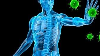 El sistema inmune es el encargado de la defensa natural del cuerpo, atacando a las sustancias externas que invaden a los sistemas del organismo y causan enfermedades.