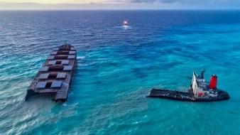 Manifestaciones en Mauricio tras desastre ecológico y muerte de 39 delfines