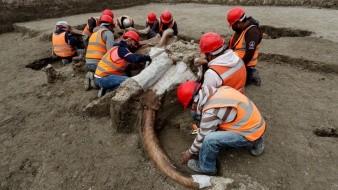 Especialistas del Instituto Nacional de Antropología e Historia (INAH) trabajan en el sitio donde fueron hallados un número importante de restos de Mamut, en la zona donde se construye el Aeropuerto Felipe Ángeles.