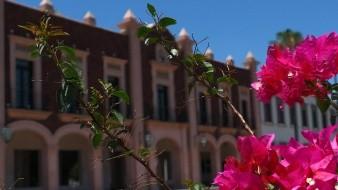 La Universidad de Sonora se encuentra en la edición 2021 del World University Rankings de Times Higher Education.