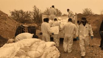 """3 toneladas y 3 mil litros de precursores para drogas los asegurados en """"narcolaboratorio"""""""