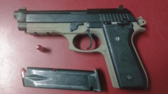 Aseguran pistola tras riña en SLRC