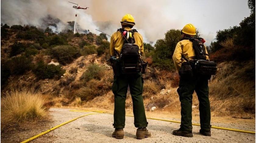 """El fuego, bautizado como """"Bobcat"""" por el Departamento Forestal y de Protección contra Incendios de California (Cal Fire), ha quemado más de 16.600 hectáreas(EFE)"""