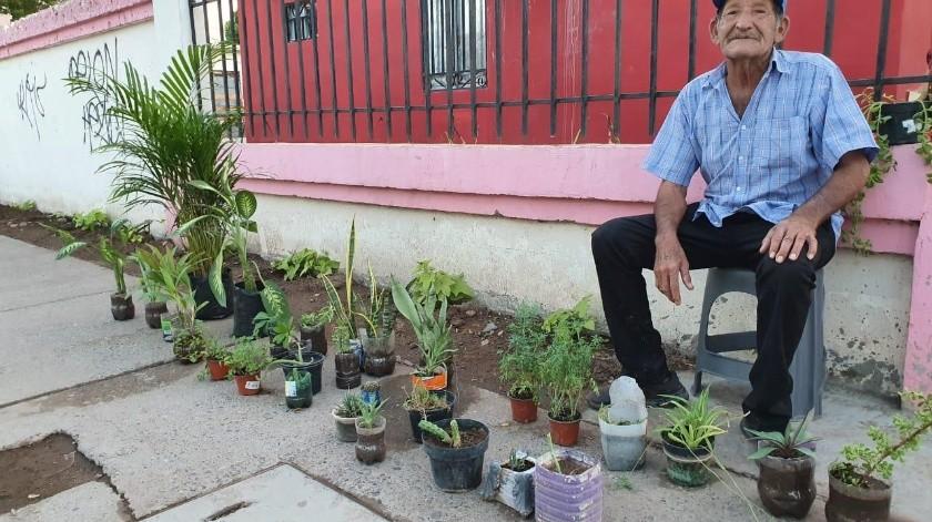 Don Salvador Velderráin ofrece a la venta diferentes tipos de plantas por fuera de su domicilio en Ciudad Obregón.(Mayra Echeverría)