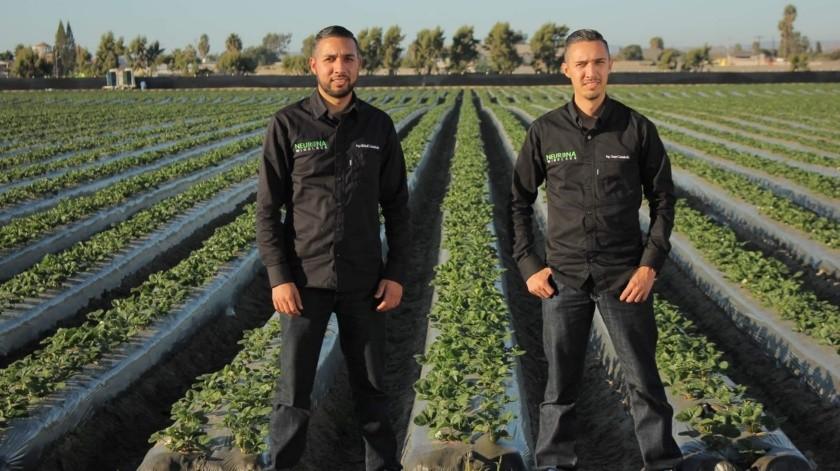 Estudiantes de Ingeniería desarrollaron un robot para el sector agrícola(Cortesia)