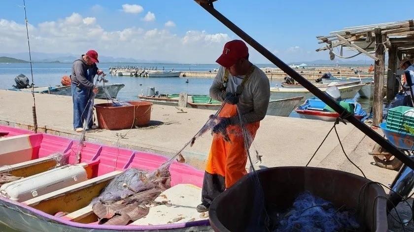 Recortes presupuestales dejan en agonía a pesca en México: Canainpesca(Archivo GH)