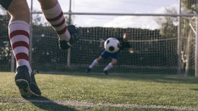 Tierno animal interrumpe un partido de fútbol(Tomada de la red)