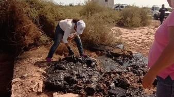 Las Madres Buscadoras hallaron un cuerpo calcinado en el municipio de Huatabampo.