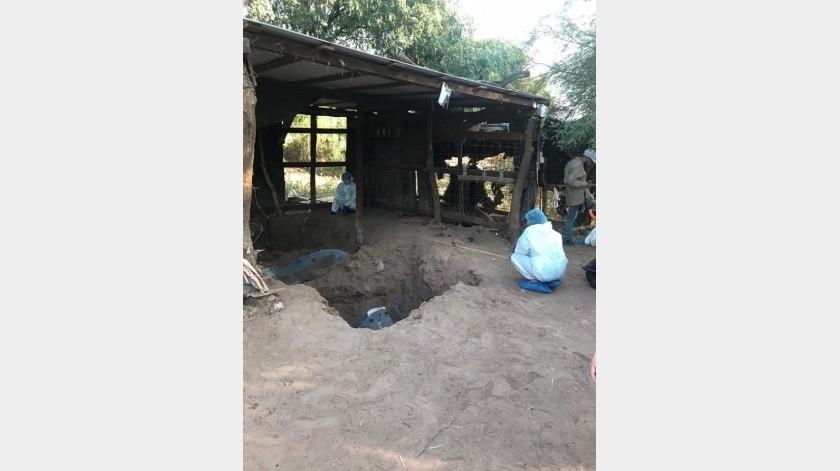 Siete osamentas hallaron entre el domingo y lunes en un terreno del Valle del Yaqui(Cortesia)
