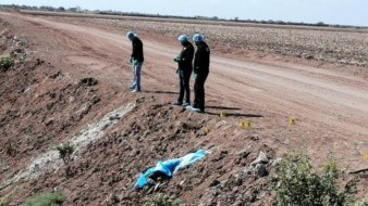Hallan tres cuerpos de hombres sin vida en Valle del Yaqui, Obregón