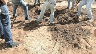 Hasta el momento han hallado en Sonora 199 restos humanos en fosas clandestinas.