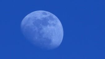 El día de Halloween aparecerá la 'luna azul'