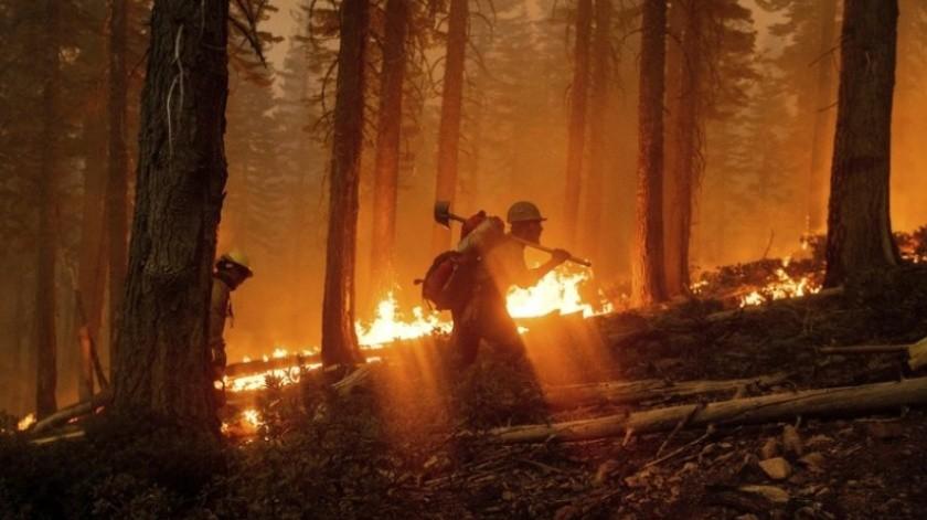 Incendio en California amenaza cultivos legales de marihuana(AP)